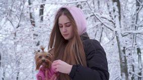 Chica joven bonita del retrato con el pelo largo cubierto con una capilla que sostiene un terrier de Yorkshire vestido en suéter  almacen de video