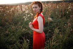 Chica joven bonita en un campo imagen de archivo