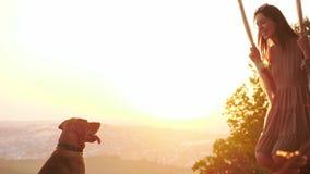 Chica joven bonita en un oscilación durante puesta del sol que sorprende almacen de metraje de vídeo