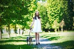 Chica joven con dos galgos en el parque Imágenes de archivo libres de regalías