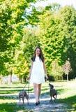 Chica joven con dos galgos en el parque Fotografía de archivo libre de regalías