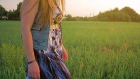 Chica joven con el pelo recto que camina en un campo verde en la puesta del sol Tiro medio almacen de metraje de vídeo