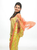Chica joven con la sari agradable Fotos de archivo libres de regalías