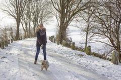 Chica joven con su perro en la nieve Imágenes de archivo libres de regalías