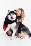 Chica joven con su perro fornido en blanco Imagenes de archivo