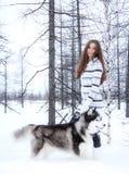 Chica joven con un perro fornido en un bosque Imagen de archivo