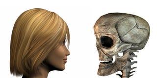 Chica joven contra el cráneo viejo aislado en un blanco ilustración del vector