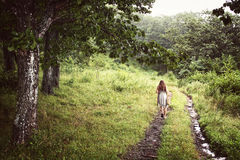 Chica joven de la parte posterior en un vestido que camina solamente en el bosque Fotos de archivo