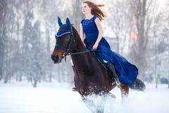 Chica joven en caballo de montar a caballo del vestido en campo del invierno Foto de archivo libre de regalías