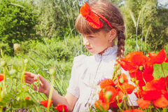 Chica joven en campo de la amapola Fotos de archivo