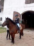 Chica joven en el caballo Fotos de archivo libres de regalías