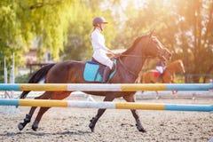 Chica joven en el caballo de bahía que galopa en su curso Imagenes de archivo