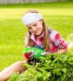 Chica joven en el jardín que cuida para las fresas Imagen de archivo libre de regalías