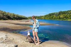 Chica joven en la playa que juega con un perro Foto de archivo libre de regalías