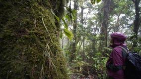 Chica joven en selva almacen de metraje de vídeo
