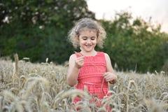 Chica joven en un campo del trigo o de maíz Imágenes de archivo libres de regalías