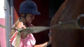 Chica joven en un casco que monta con un cepillo especial, peinando su caballo hermoso joven marrón 4K v?deo 4K almacen de video