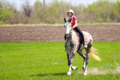 Chica joven en un casco que monta un caballo dapple-gris en un campo de hierba Imagen de archivo
