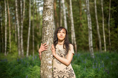 Chica joven en un Forest Park que abraza un árbol de abedul y que mira el sol Fotos de archivo