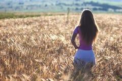 Chica joven feliz en campo de trigo de oro Goce de la mujer joven nacional Fotografía de archivo