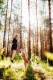 Chica joven feliz en el bosque con su perro que salta y que juega imágenes de archivo libres de regalías