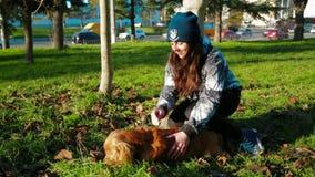 Chica joven feliz que frota ligeramente su perro metrajes