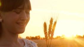 Chica joven feliz que sostiene los oídos maduros del trigo en rayos del sol brillante La muchacha hermosa sonríe en un campo del  metrajes