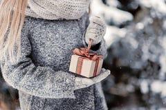 Chica joven hermosa en el bosque del invierno que sostiene la decoración Fotos de archivo