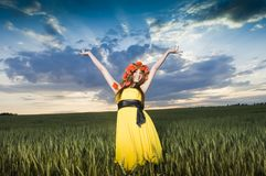 Chica joven hermosa en el campo de trigo Imágenes de archivo libres de regalías