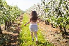 Chica joven hermosa en jardín de la primavera Imagen de archivo libre de regalías