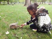 Chica joven hermosa que alimenta una ardilla en un parque en Londres Imagen de archivo