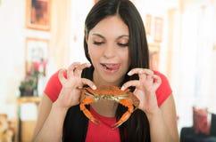 Chica joven hermosa que goza de un cangrejo delicioso fotos de archivo libres de regalías