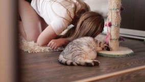Chica joven hermosa que juega con un gato rayado activo en la alfombra en casa almacen de video