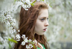 Chica joven hermosa que se coloca cerca de árboles florecientes en la primavera Gard Fotografía de archivo
