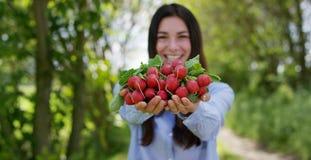 Chica joven hermosa que sostiene un rábano limpio en la mano, en el fondo de la naturaleza Concepto: biología, bio productos, bio Imagen de archivo libre de regalías