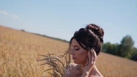 Chica joven imponentemente hermosa en un campo de trigo con clase Ella se coloca con un ramo de espiguillas en sus manos y presio almacen de metraje de vídeo