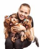 Chica joven linda con los perros del terrier de Yorkshire Fotografía de archivo