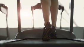Chica joven linda que hace ejercicios en el bacground del gimnasio metrajes