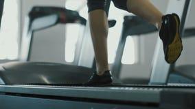 Chica joven linda que hace ejercicios en el fondo del gimnasio almacen de metraje de vídeo