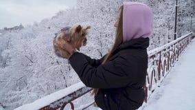 Chica joven linda que lleva a cabo una situación del terrier de Yorkshire en el puente en un fondo de árboles nevados en un invie metrajes