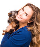 Chica joven linda que sostiene perros del terrier de Yorkshire Fotografía de archivo libre de regalías