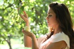 Chica joven magnífica con las manzanas Fotografía de archivo libre de regalías