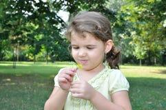 Chica joven mirando las flores escogidas Imágenes de archivo libres de regalías