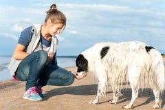 Chica joven que alimenta su perro precioso en la playa del verano Fotos de archivo libres de regalías
