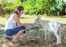 Chica joven que alimenta una pequeña cabra blanca en una arboleda Imagenes de archivo