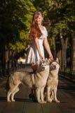 Chica joven que camina abajo de la calle con dos perros Imagen de archivo
