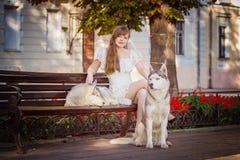 Chica joven que camina abajo de la calle con dos perros Imagen de archivo libre de regalías