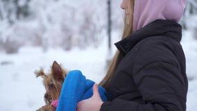 Chica joven que camina con un terrier de Yorkshire en un parque nevado del invierno que sostiene un perro envuelto en una manta a