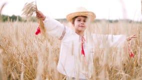 Chica joven que camina en el campo entre los oídos en la puesta del sol metrajes