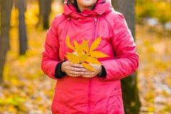 Chica joven que camina en parque del otoño Imágenes de archivo libres de regalías
